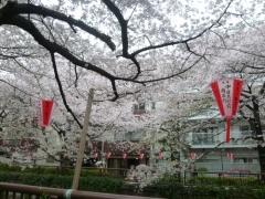 2011-04-09